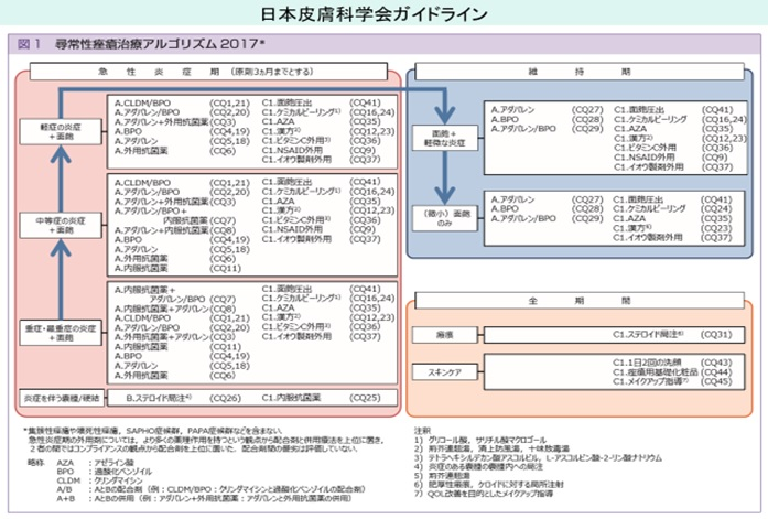 ガイドライン 科学 会 日本 皮膚 日本小児皮膚科学会
